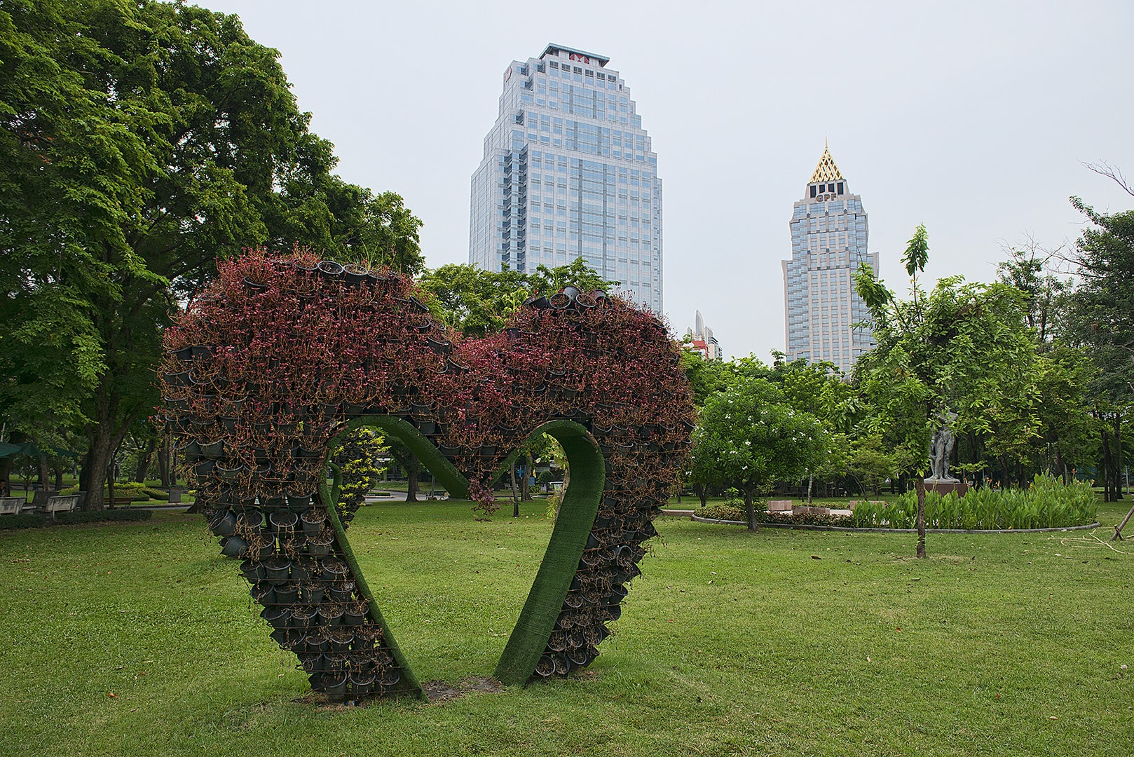 a heartshaped bush at Lumphini Park Bangkok