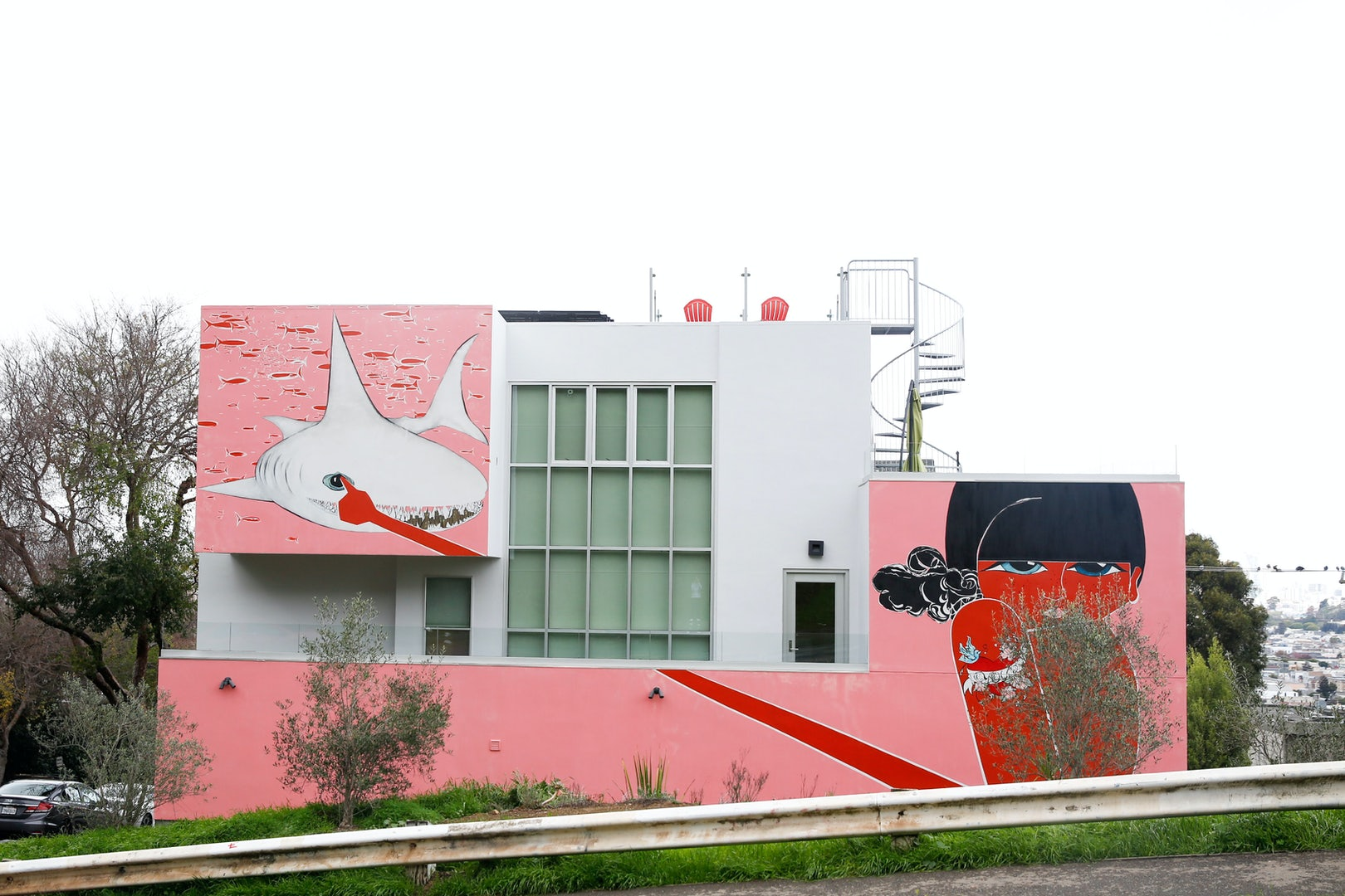 House with pink and a white shark painted on