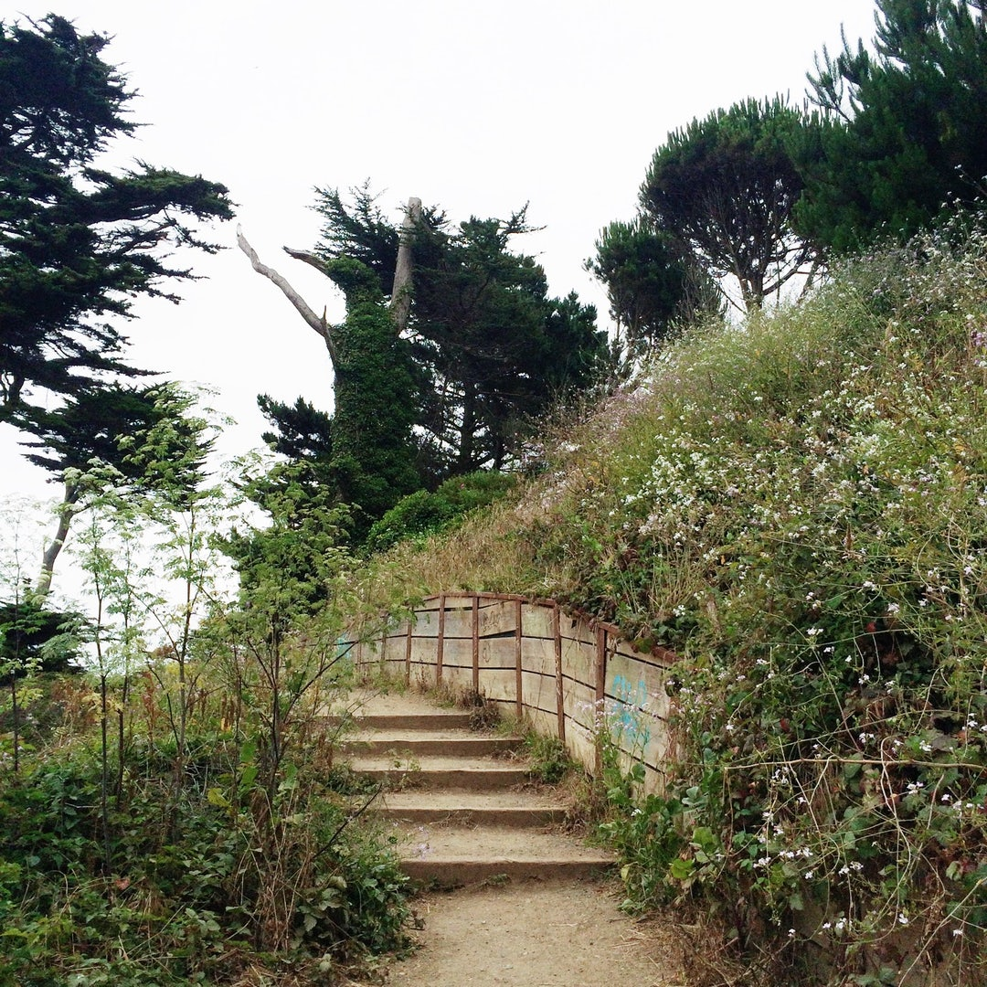 Land's End Trail in SF