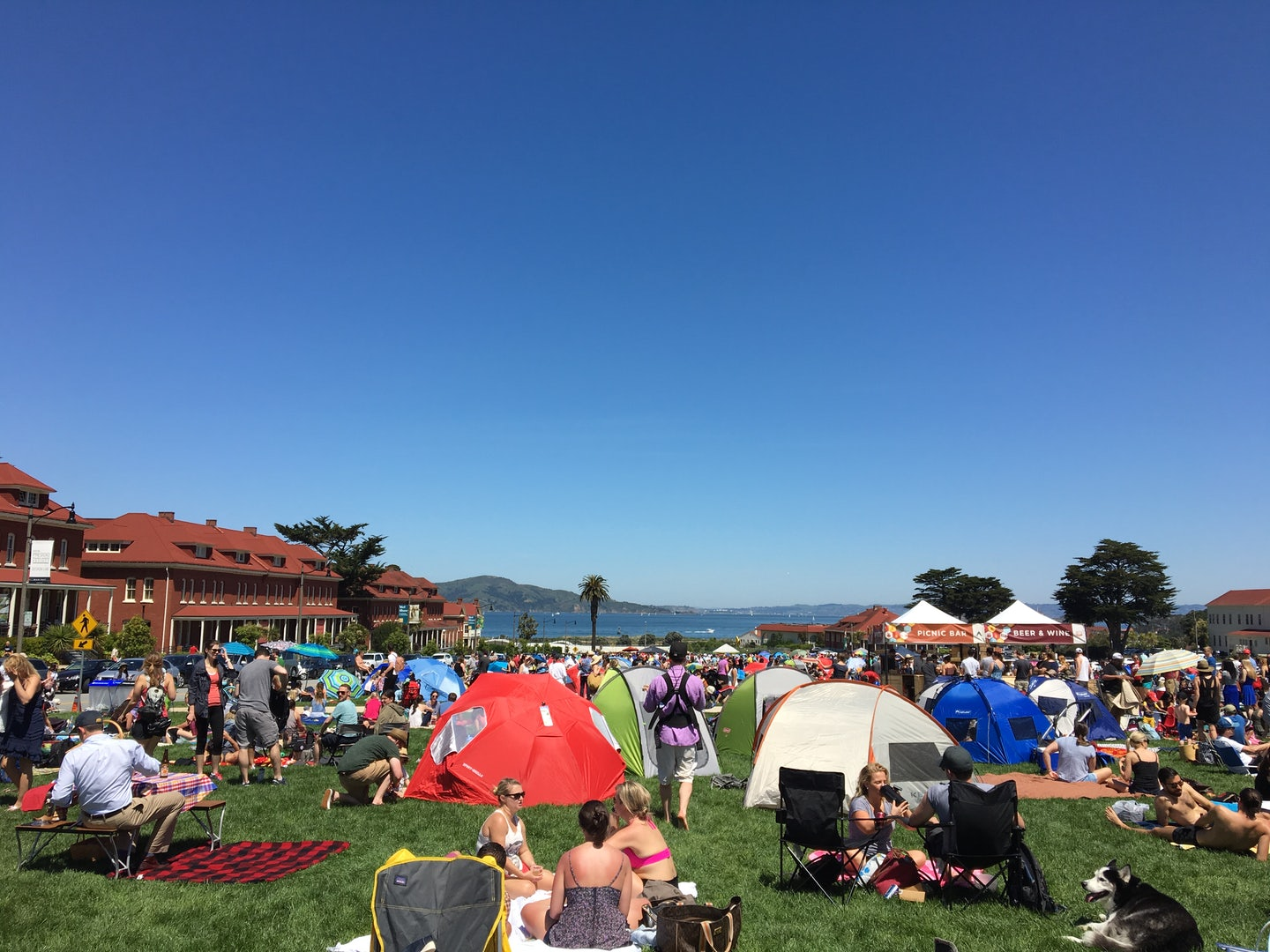 people at Presidio Picnic