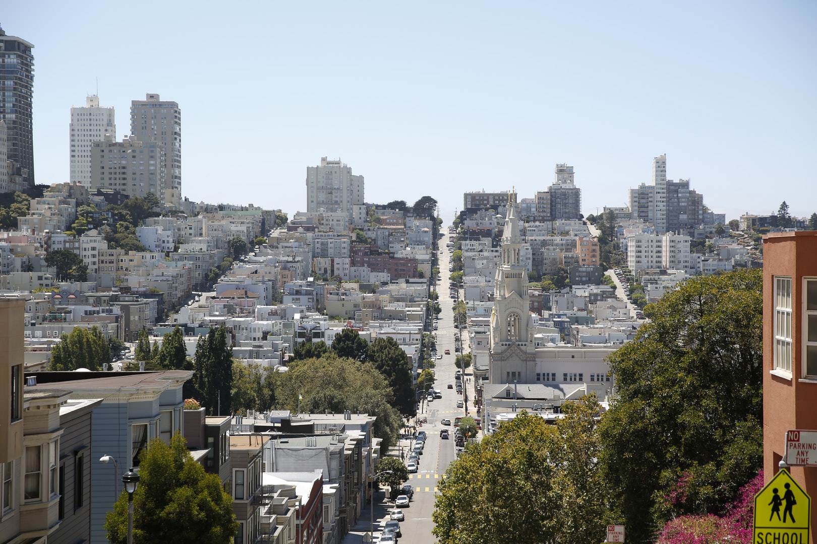 view from the Telegraph hill in San Francisco