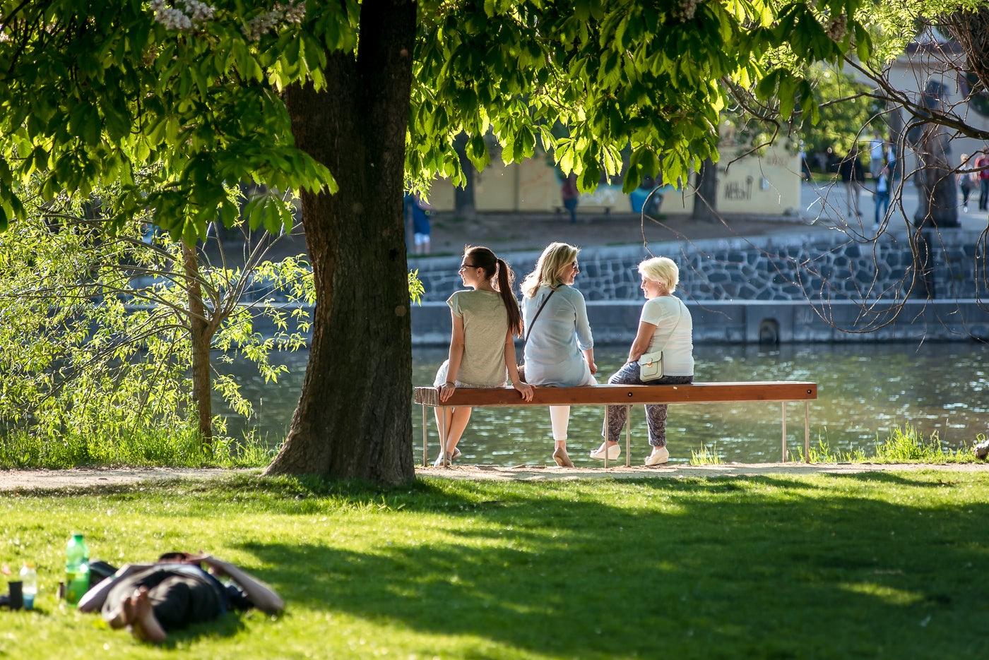 people sitting at Strelecky island