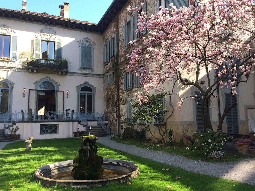 blossoming tree with pink flowers at the garden Vigna di Leonardo
