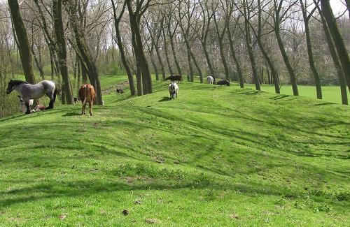 fort van beieren park