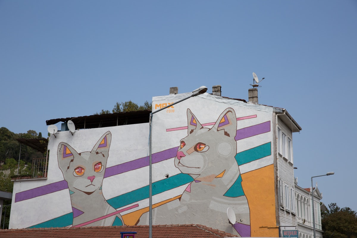 Street art of cats in Sariyer Istanbul
