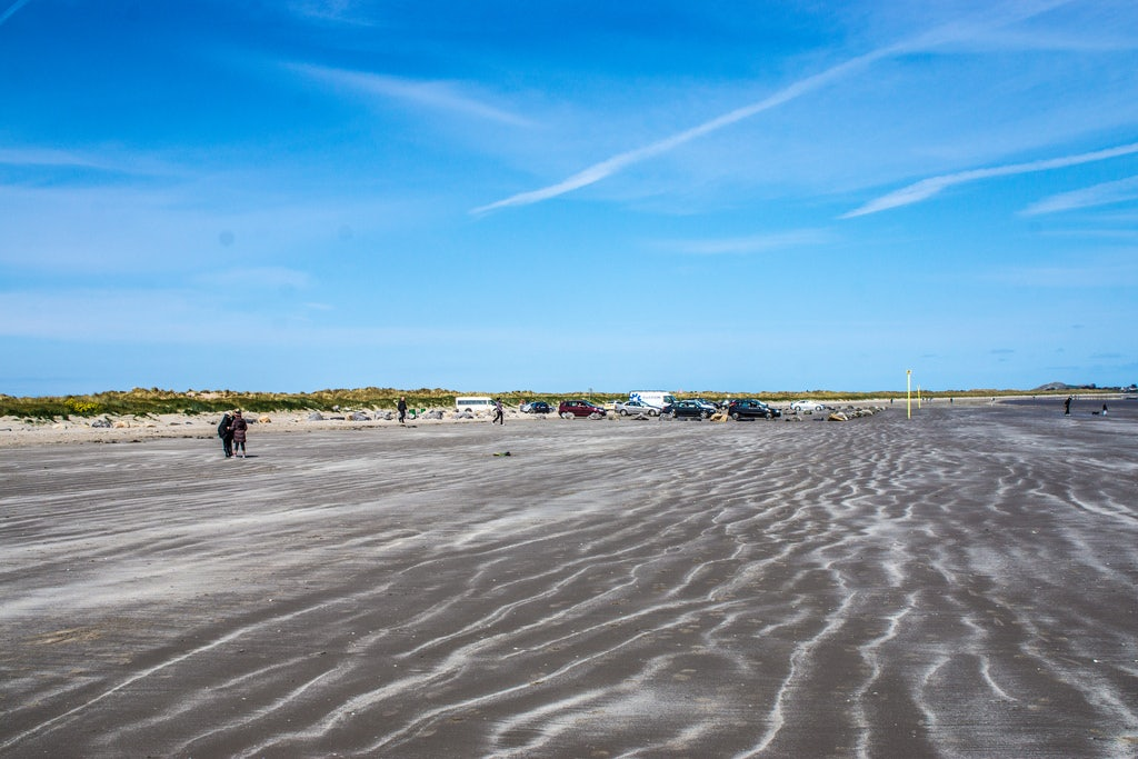 Beach bull island