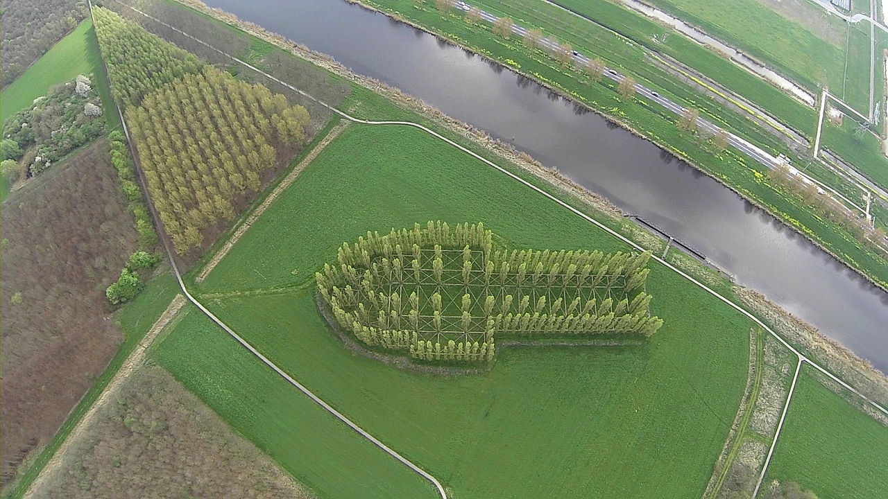 drone view of The Green Cathedral project