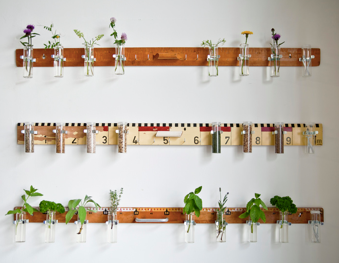 little plants hanging at Collectiv. by Swan