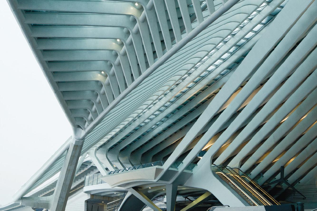 roof Liège-Guillemins station