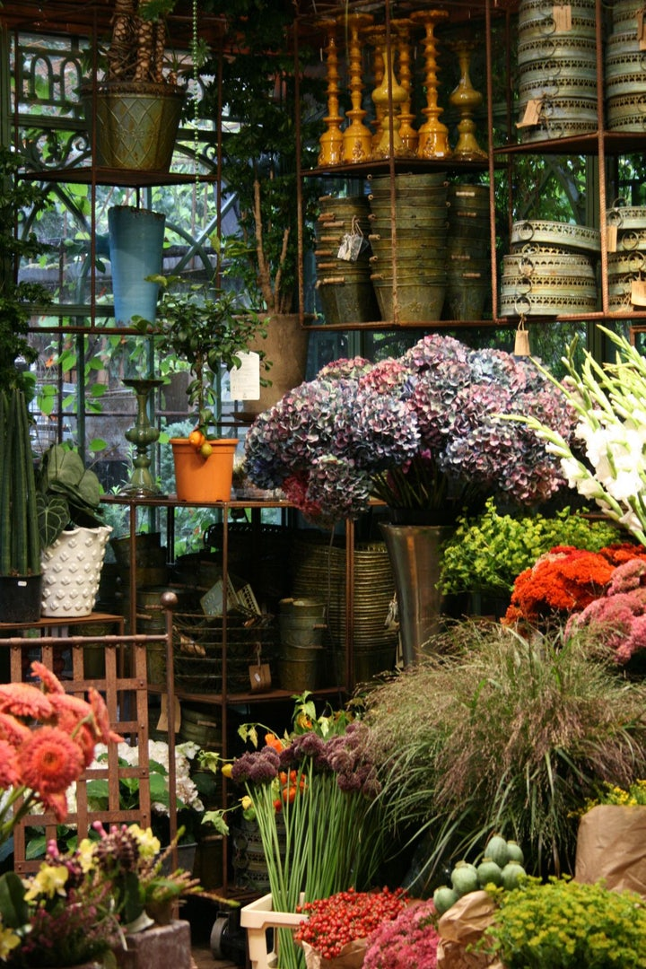 interior flower shop Gullvivan