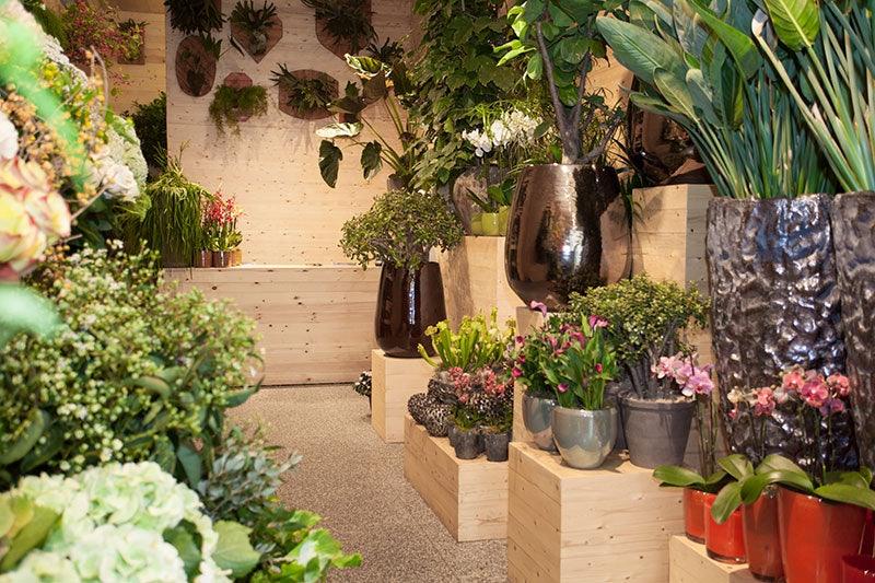 flower store Baltimore