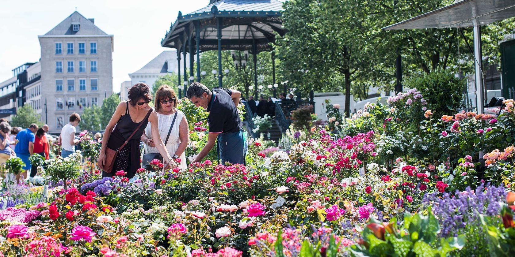 flower market at the Kouter