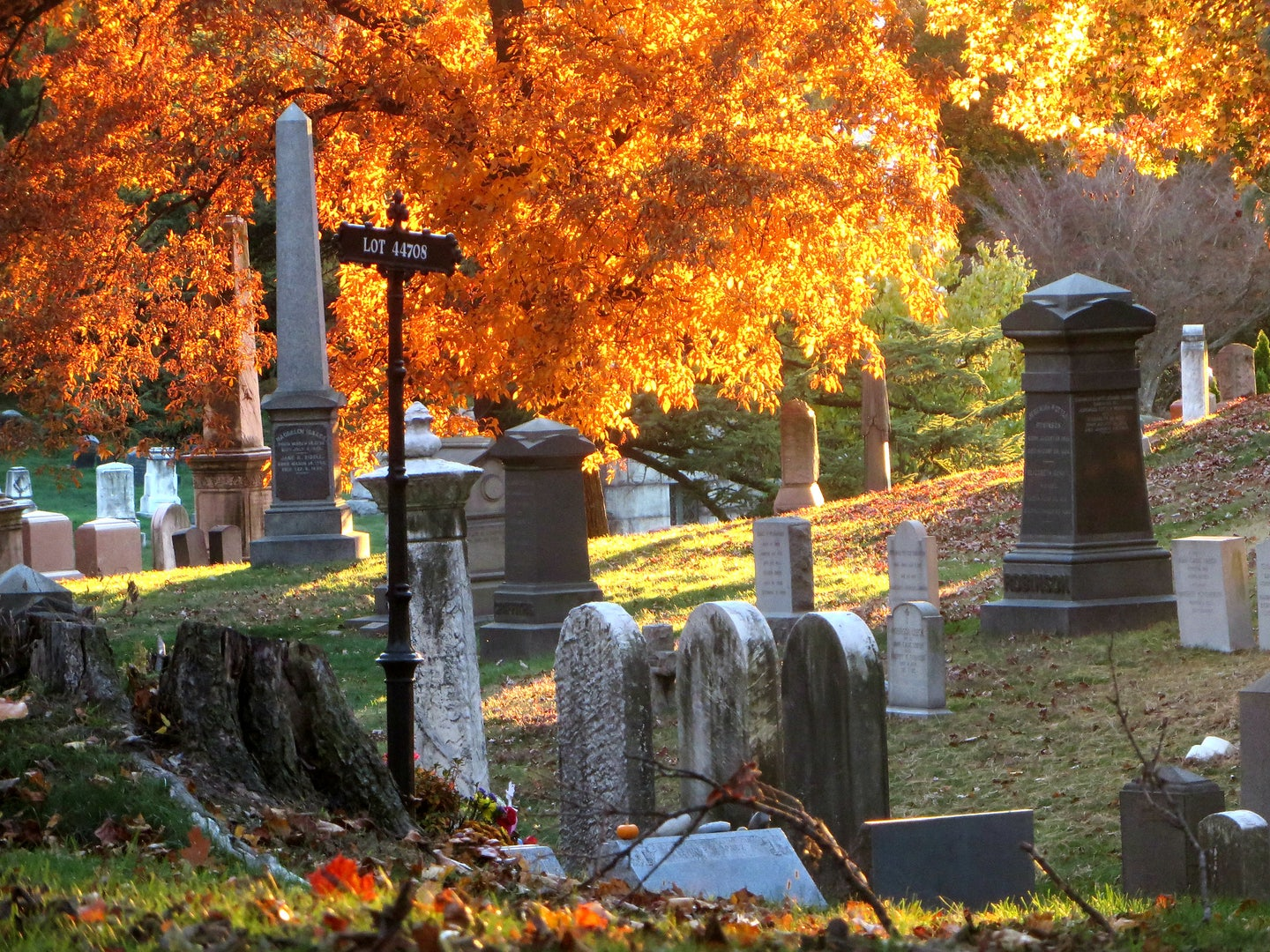 Green-Wood cemetery during autumn