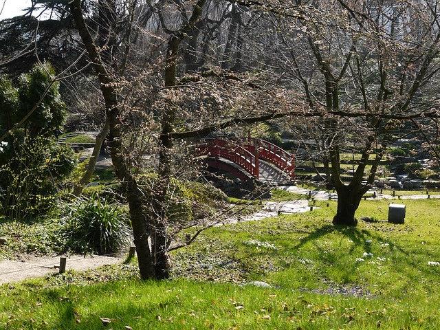 Japanese garden Albert Kahn
