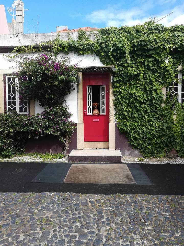entrance and red door at Procópio bar