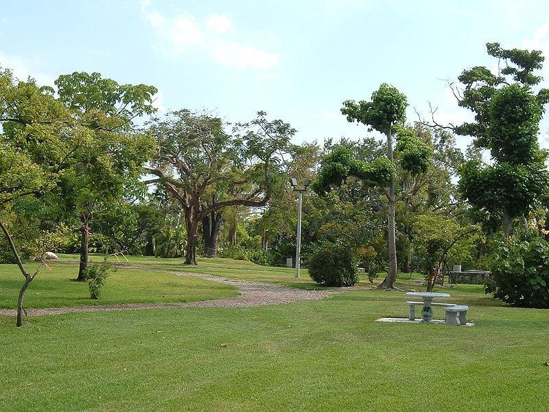 The John C. Gifford Arboretum