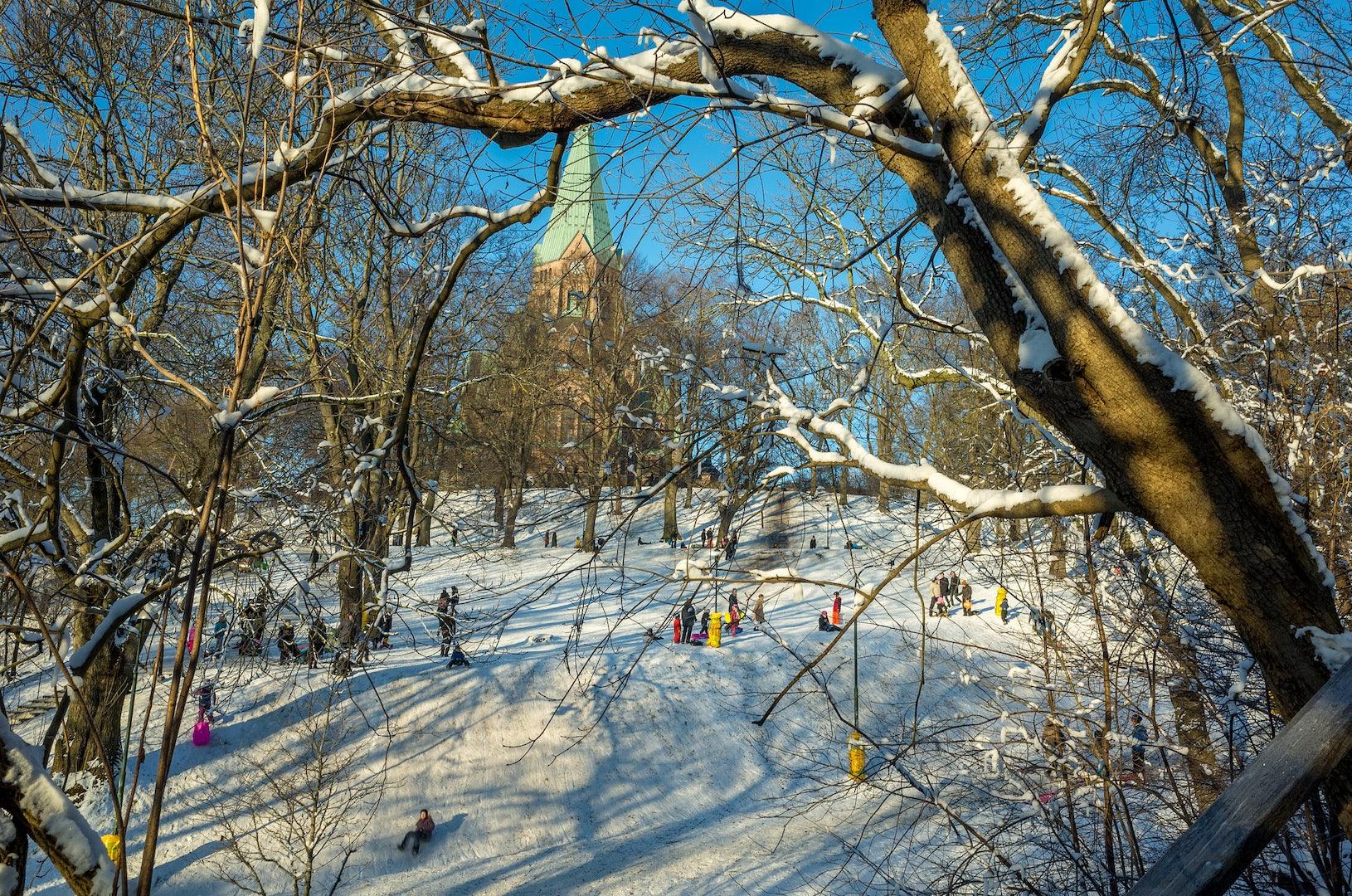 Vitabergsparken during winter