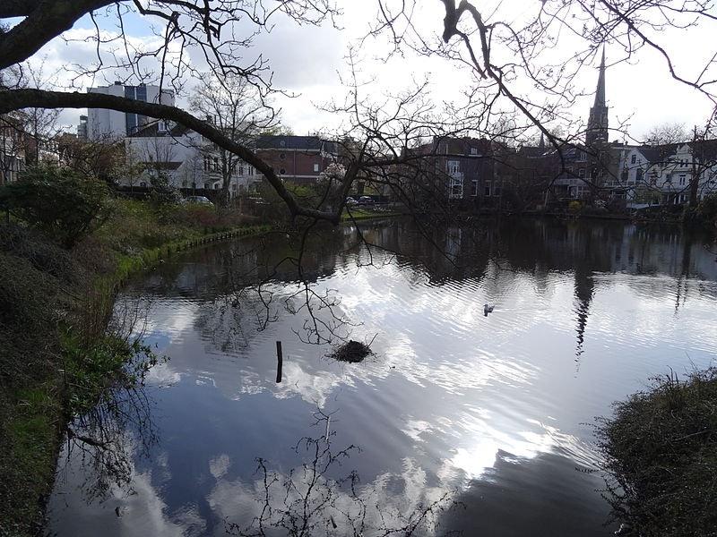 a quiet pond in Kralingen, Rotterdam