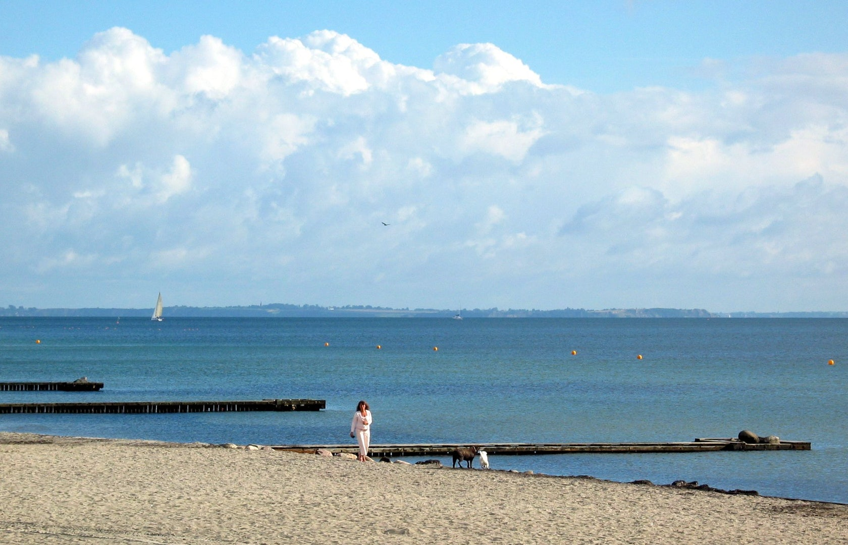 Amager Beach Park the 5 best local beaches and swimming spots in copenhagen