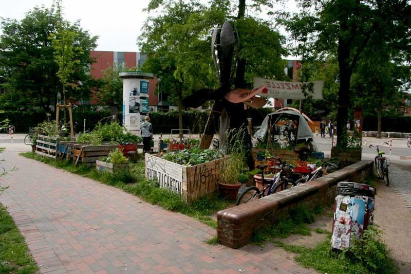 Die Keimzelle urban garden in Hamburg