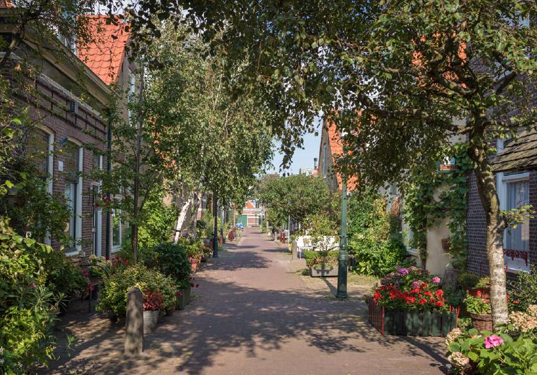 the quiet werfstraat in The Hague