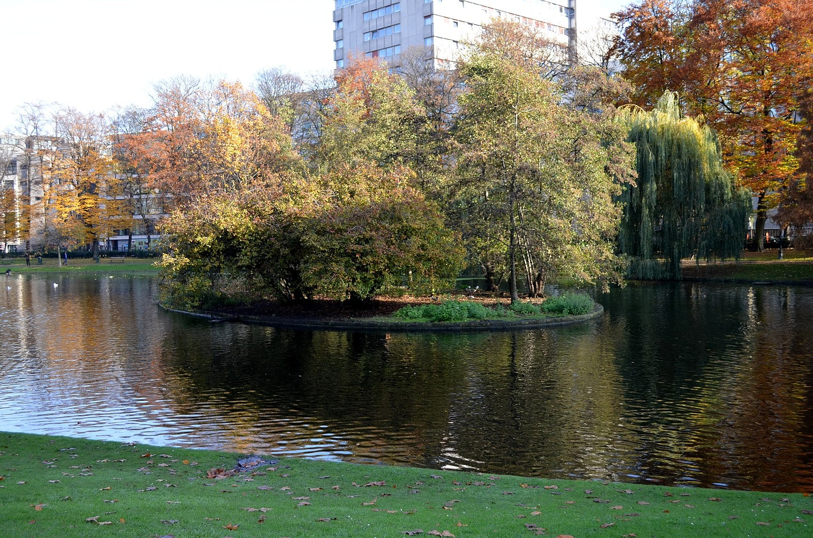 Brussels - Parc Leopold autumn trees and pond