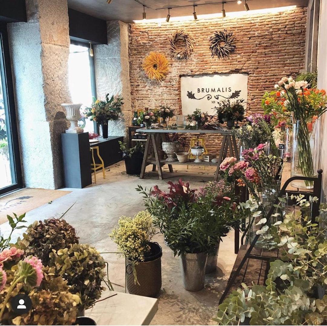 Madrid - Brumalis NEW flowershop interior