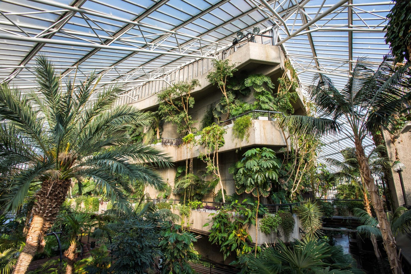 Nostalgic London - Barbican Conservatory