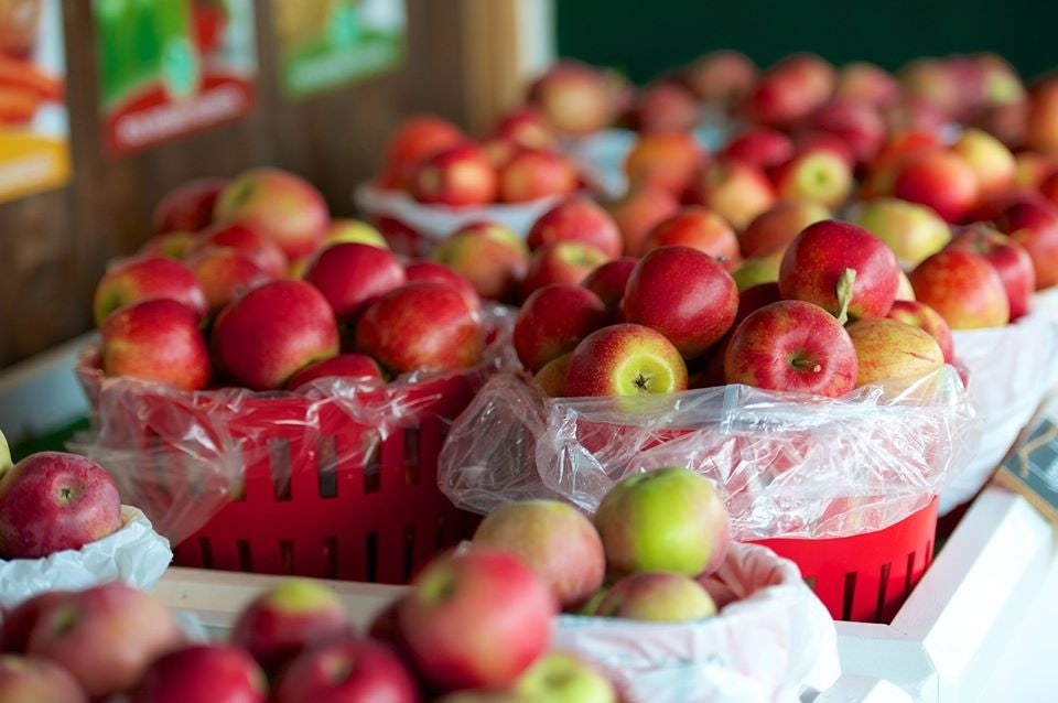 fresh apples at the Nathan Phillips Square Farmers' Market