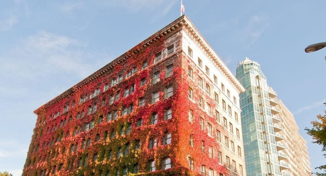 exterior of the Sylvia hotel covered in red poison ivy
