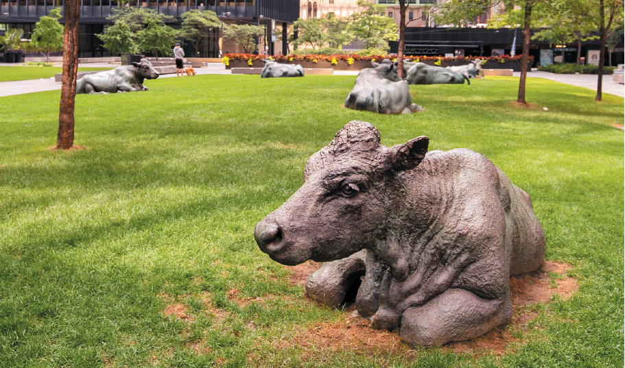 statues of cows by Joseph Fafahrd in Toronto