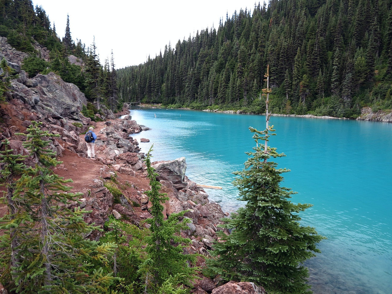 the hike trail along the Garibaldi Lake