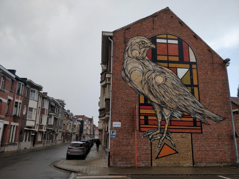 Belgium - Street art - Art Falco Peregrinus Deco Dzia