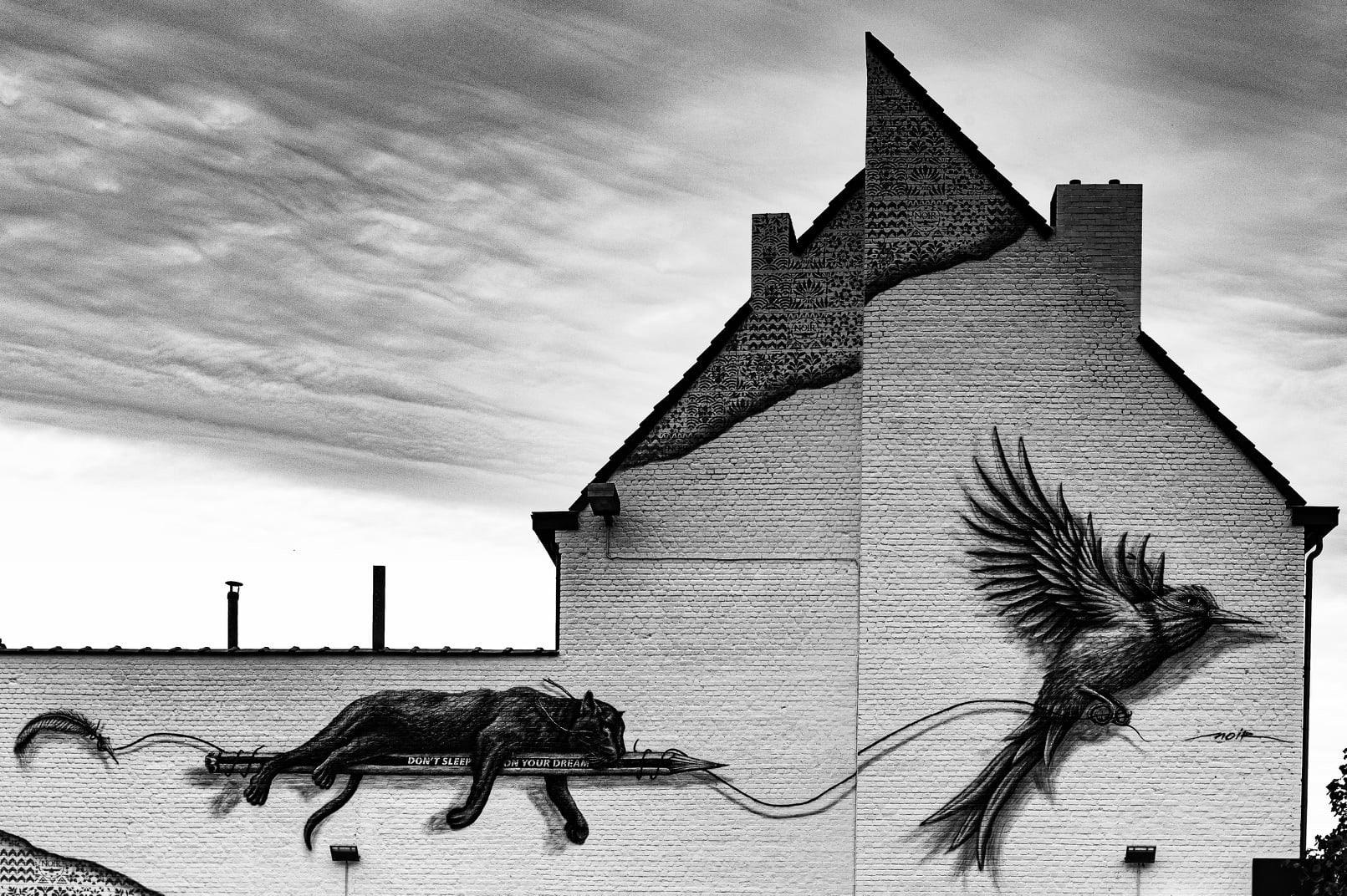 Belgium - Street art by NOIR in Mons
