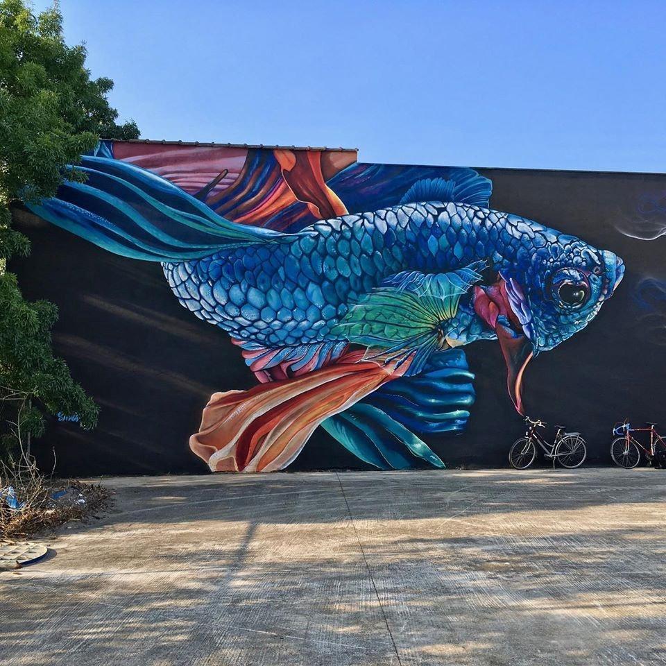 Belgium - Street art fish mural by Smok in Vilvoorde