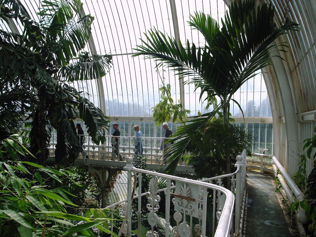 Palm House at the Kew Royal Gardens
