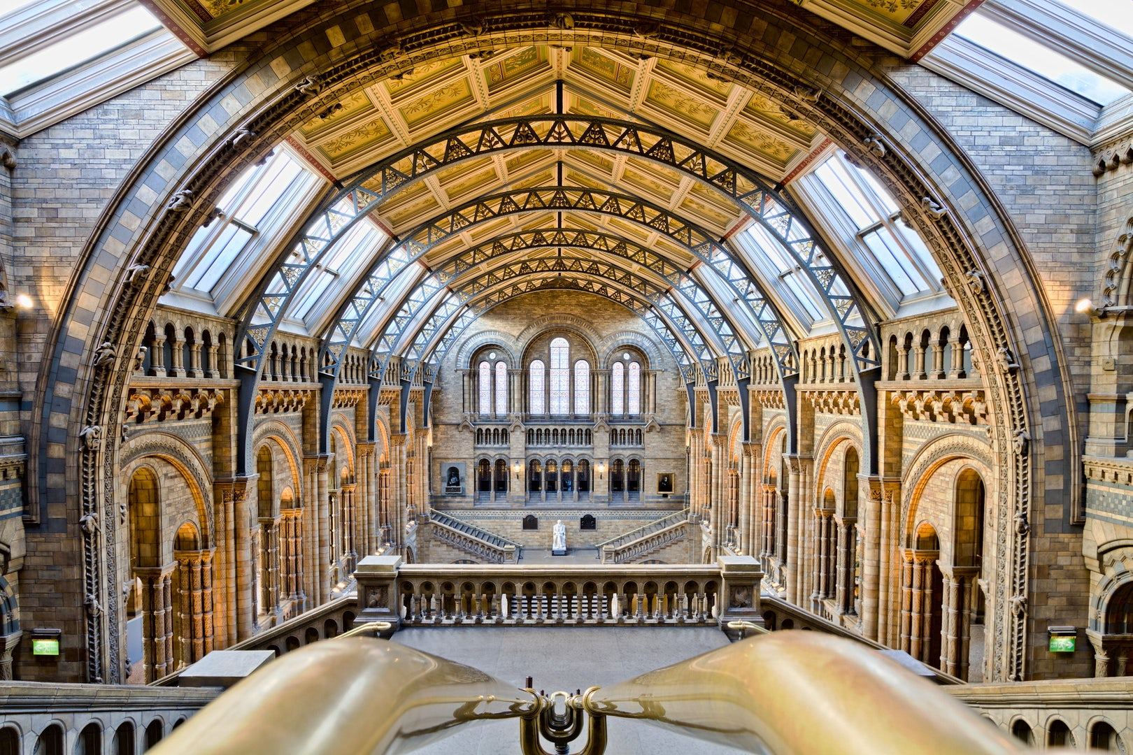 grand hall of the Natural History Museum