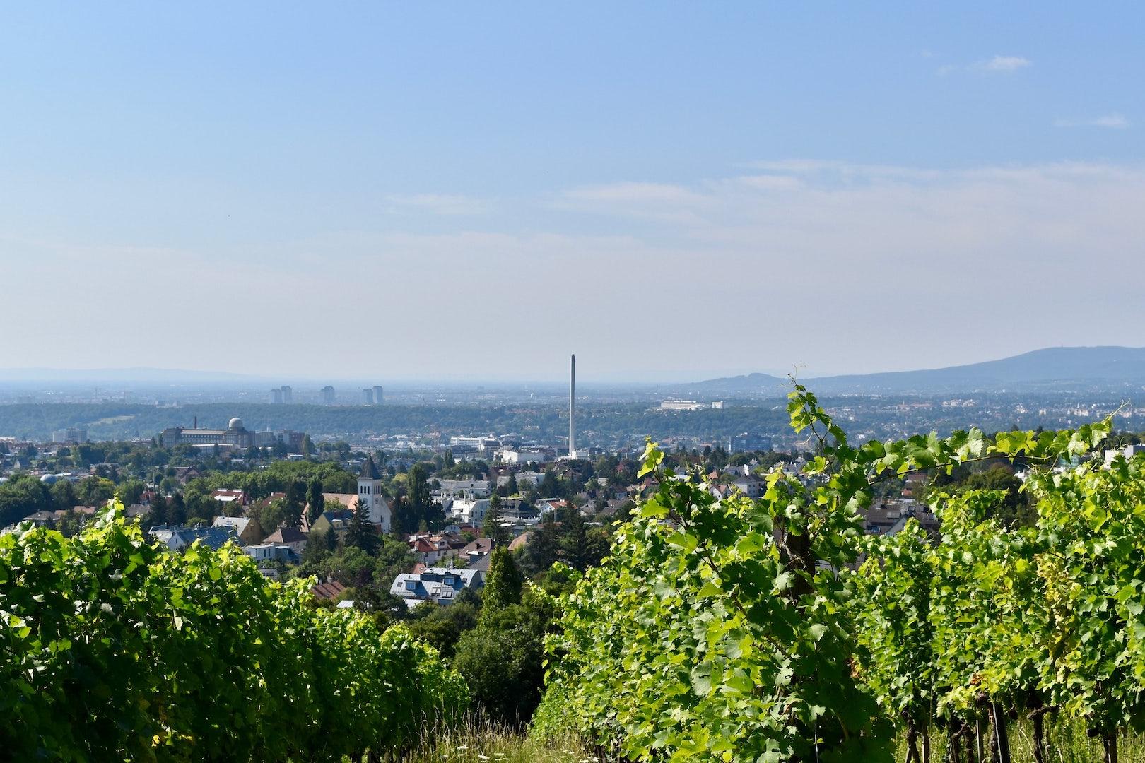 view over Vienna from the Wilhelminenberg