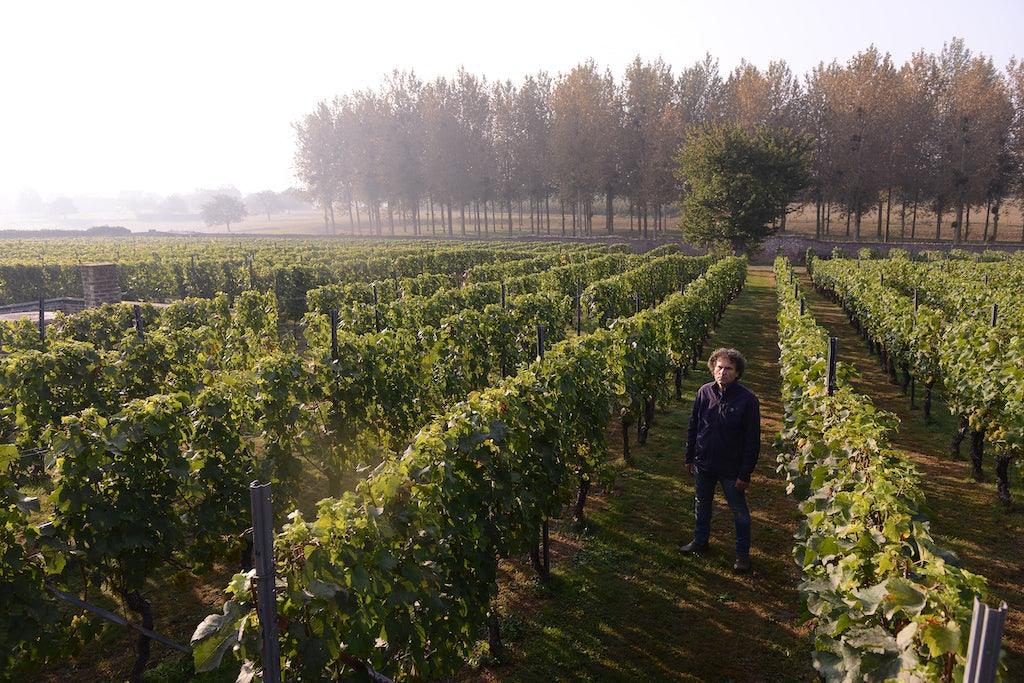 vineyard  Clos d'Opleeuw