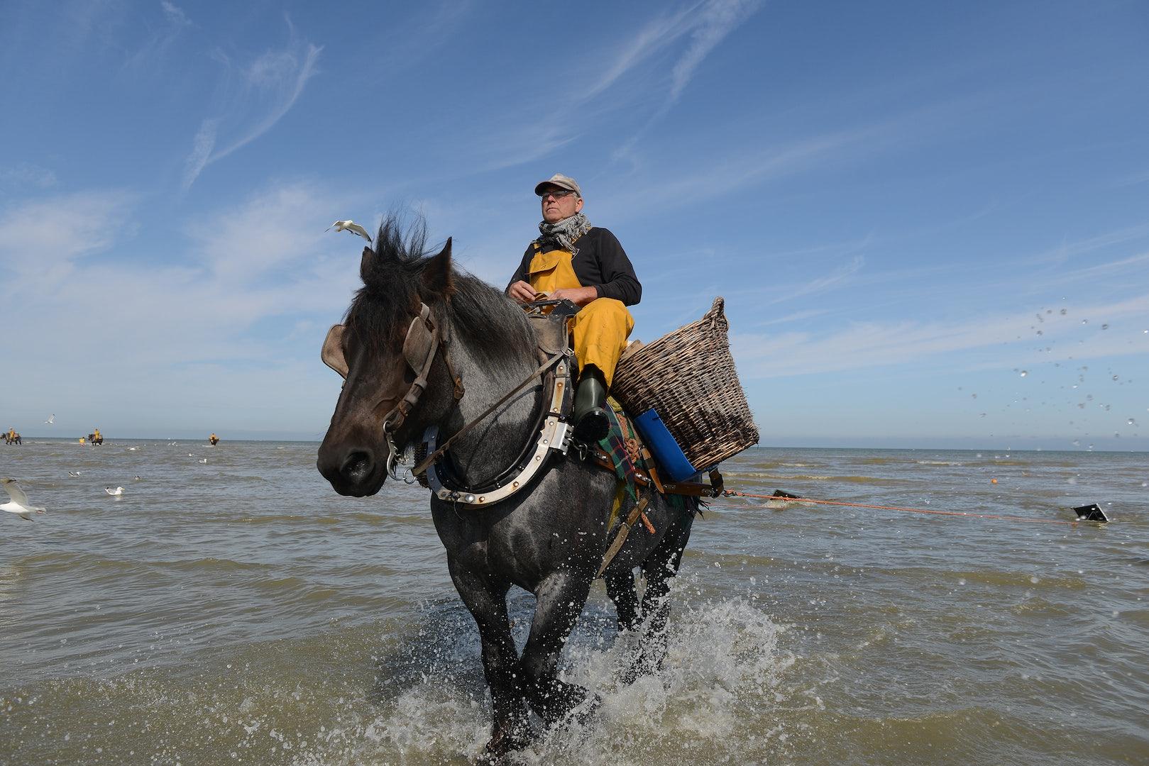 traditional shrimp fisher in Oostduinkerke Belgium